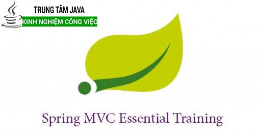 Khóa học Spring Java cao cấp